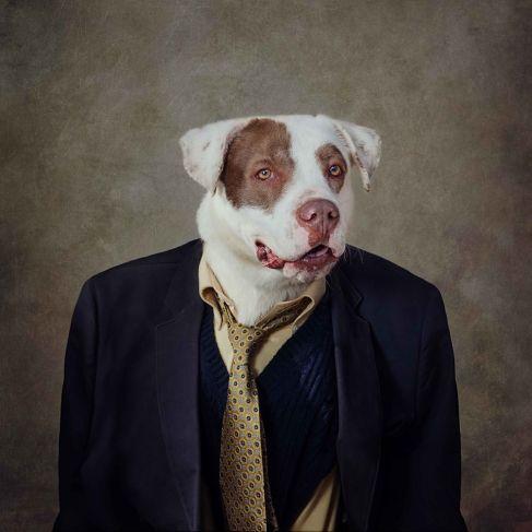 portraits artistiques de Tammy Swarek