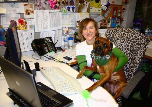 emmenez votre chien au bureau