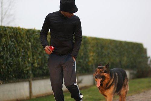 coaching canin