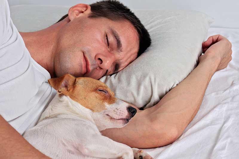 symptômes et signes d'une allergie canine