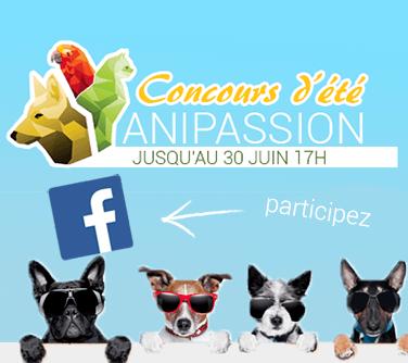concours facebook wanibox