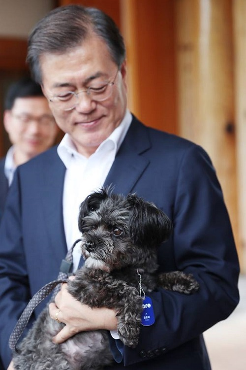 Moon Jae-in avec son chien adopté