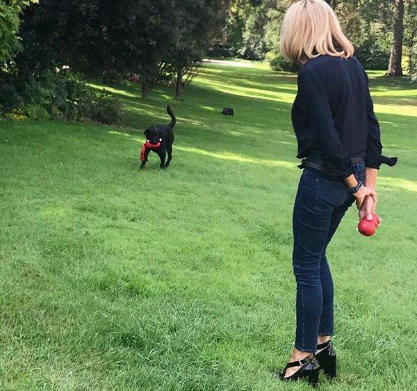 Nemo, le chien du président Macron et son épouse