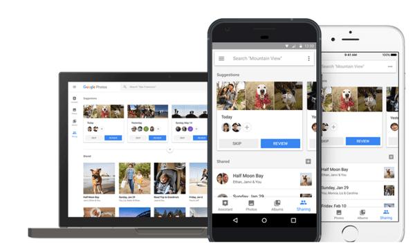 Google Photos reconnaît maintenant vos animaux