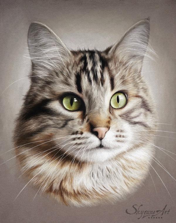 Skyzune, peintre animalier - portrait du chat Pantoufle