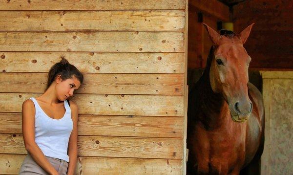 peur du cheval : accepter et comprendre