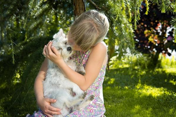 Apprendre à mon enfant à s'occuper d'un animal de compagnie
