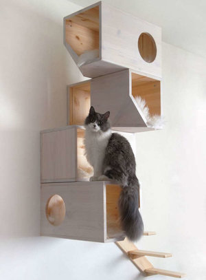 plateforme mural pour chat