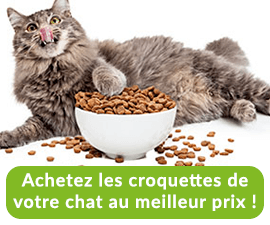 comparer croquettes chats