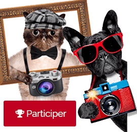 concours photo anipassion