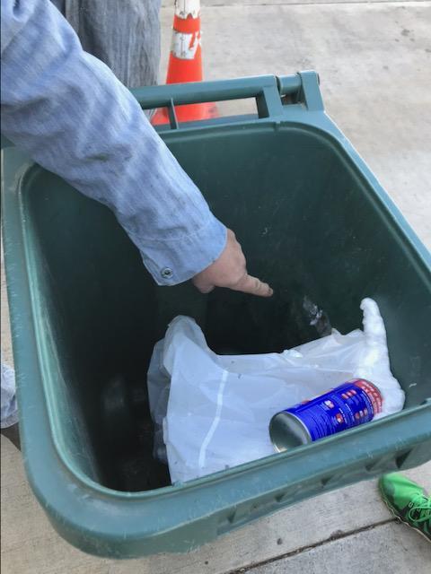 chaton abandonné dans poubelle