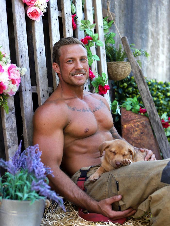 pompiers australiens et animaux : avec les chiens