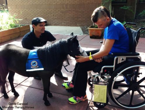 chevaux aident à mieux vivre le handicap