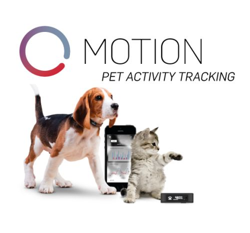 Tractive Motion